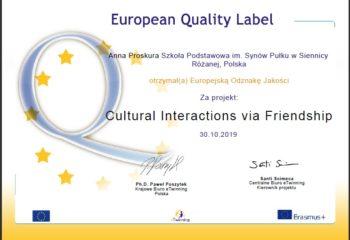 Europejska Odznaka